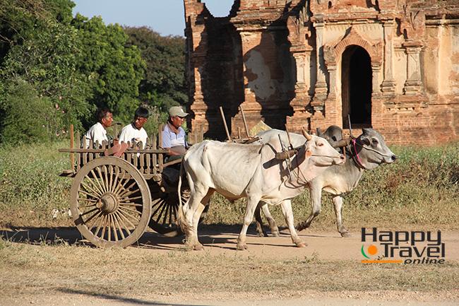 Imagenes cotidianas de Bagan